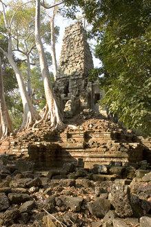 Cambodia, Angkor, Siem Reap, Preah Palilay Temple - GA00059