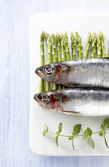 Sardines on platter with asparagus and herbs, elevated view - KSWF00162