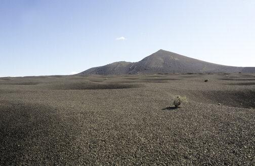 Spain, Lanzarote, Desert scenery - PM00605