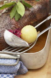 Roasted goose in roasting tray with dumpling and red cabbage, close-up - SC00298
