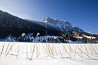 Germany, Bavaria, Ferchensee, Winter scenery - FOF00788