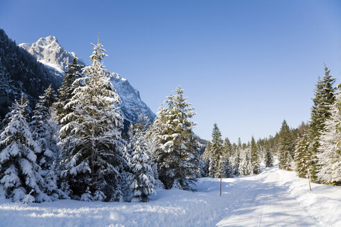 Germany, Bavaria, Winter scenery in the background Wetterstein mountains - FOF00785