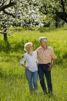 Germany, Baden Württemberg, Tübingen, Senior couple walking across field - WESTF08857