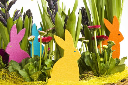 Easter decoration, close-up - GWF00840