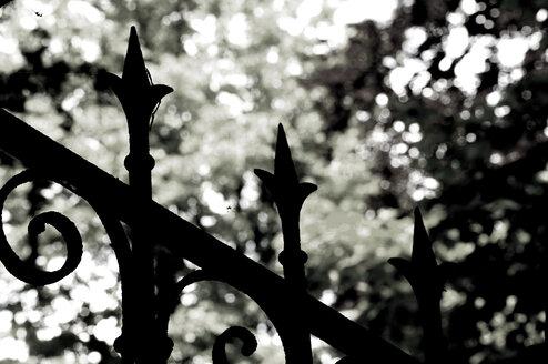 Fence, close-up - AWDF00024
