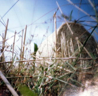 Straw bale in field, (pinhole camera) - AWD00061