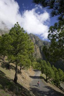 Spain, The Canary Islands, La Palma, Woman with mountain bike - DSF00130