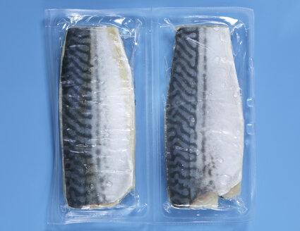 Frozen Mackerel vaccuum packed, elevated view - THF00957