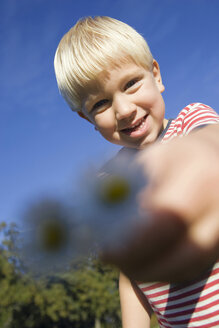 Little boy (4-5) holding daisies, low angle view - SMO00264