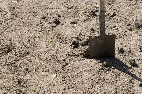 Shovel in dirt - AWDF00169