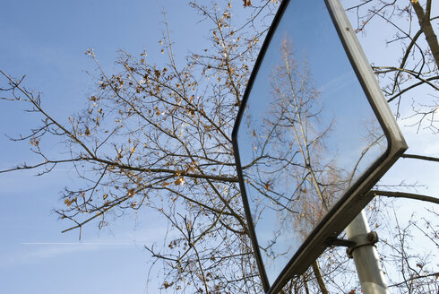 Tree reflection in road mirror, close-up - AWDF00127