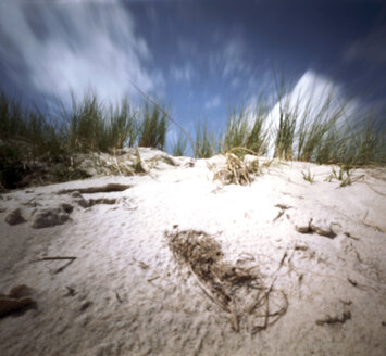 Germany, North Sea, Amrum, Dune with marram grass - AWD00304