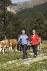 Austria, Karwendel, Senior couple nordic walking - WESTF10551