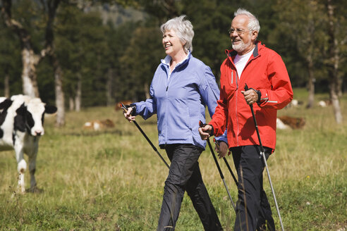 Austria, Karwendel, Senior couple nordic walking - WESTF10548