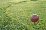 Golf ball on golf course, close-up - CRF01526