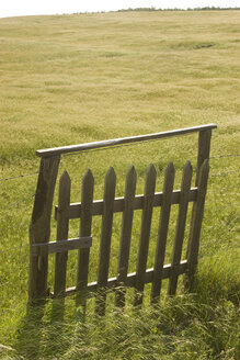 Italy, Tuscany, wooden gate in pasture - FFF01019