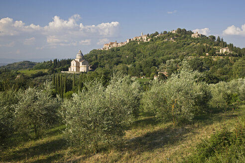 Italy, Tuscany, Sanctuary of the Madonna di San Biagio, Montepulciano in background - FOF01285