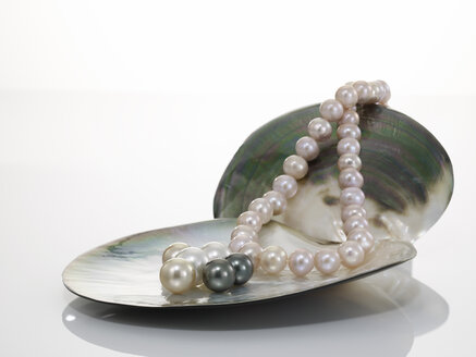 Pearl necklet and black pearl on shell - AKF00011