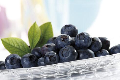 Blueberries on glass plate, close-up - 10203CS-U