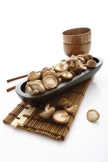 Shiitake Mushroom on plate - 10764CS-U