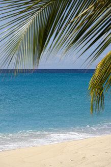 St Vincent, Grenadines, Caribbean, canouan Island, Glossy bay, Empty beach - PSF00004