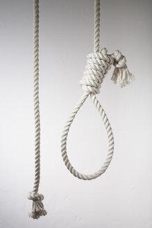 Hangman's noose, close up - JRF00106