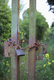 Germany, Old metal gate with padlock - WWF00861