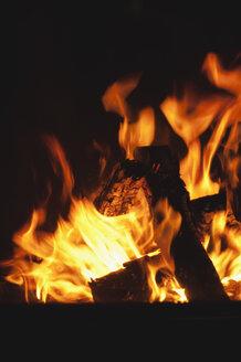 Open fire, close-up - WEST11573