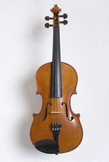 Violin - MUF00829