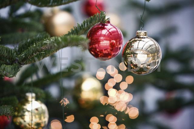 Christmas tree balls on christmas tree, close up - MFF00393