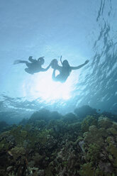 Egypt, Red Sea, Two persons snorkeling - GNF01153