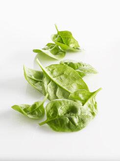 Raw Leaf spinach on white background - KSWF00536