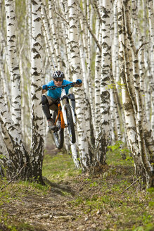 Italy, Lake Como, Mountain biker riding in the woods - FFF01068