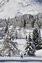 Austria, Tyrol, Seefeld, Wildmoosalm, Woman cross country skiing - MIRF00003