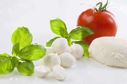 Mozzarella cheese and basil leaves - MAEF01822