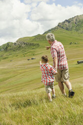 Italy, Seiseralm, Grandfather and grandson (6-7) walking in field, rear view - WESTF13393