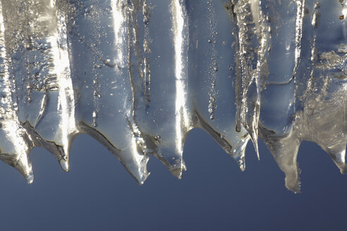 Close up of icicles. - TLF00407