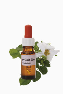 Bottle with Bach Flower Stock Remedy, Wild Rose (Rosa corymbifera), close-up - 12047CS-U