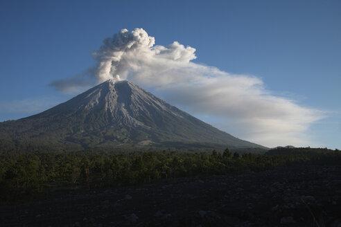 Indonesia, Java, Semeru volcano erupting - RMF00418