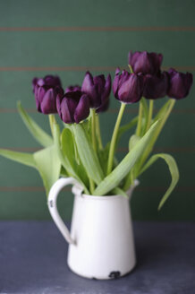 Tulips in vase, close up - COF00124