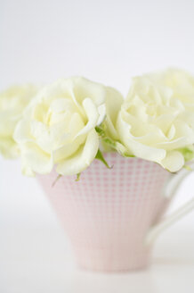Flower vase with white roses on white background, close up - COF00115