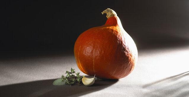 Hokaido pumpkin with garlic clove, close-up - SRSF00038