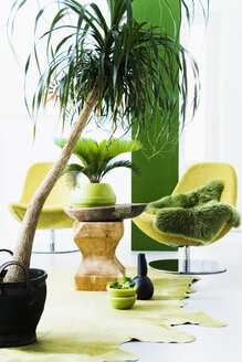 Modern living room with plants and chairs - HOEF00280