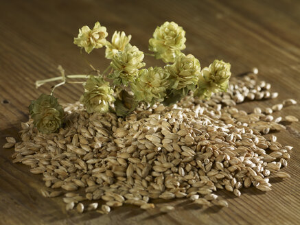 Malting barley and hops on wooden surface - SRSF00203
