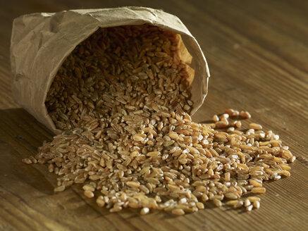 Unripe spelt grains spilling on wooden surface - SRSF00173