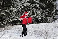 Belgium, Wallonia, High Venn, Man carrying christmas present and walking in snow - GWF001168