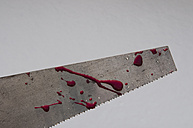 Germany, Close up of saw with blood in snowy winter - AWDF000597