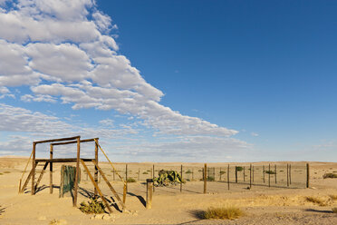 Africa, Namibia, Swakopmund, Namib Desert, View of welwitschia drive - FO002409