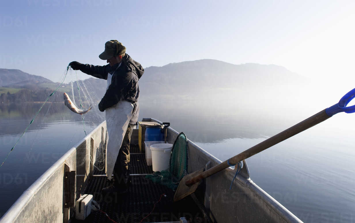 Austria, Mondsee, Fisherman caught a fish in fishing net - WWF001682 - Wolfgang Weinhäupl/Westend61