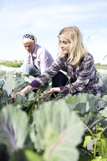 Germany, Saxony, Women working at the farm - MBF001019